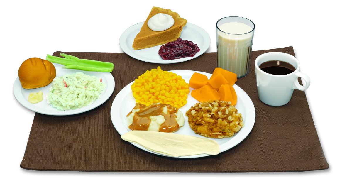 Diferentes réplicas de alimentos Nasco