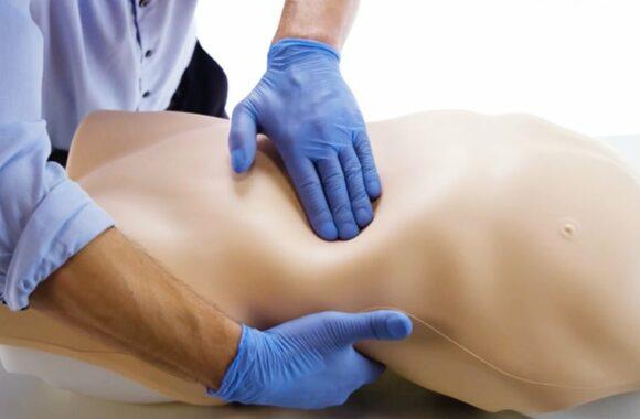 Entrenador de examen abdominal limbs and things