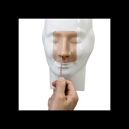 Simulador de manejo de hemorragia nasal adam rouilly taq sistemas medicos practica clinica